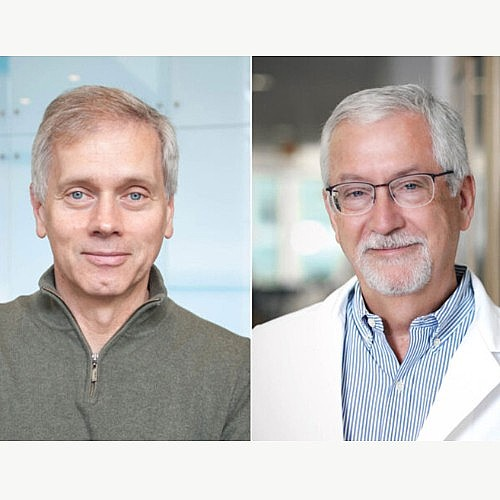 Colonna, Ley Elected to National Academy of Sciences